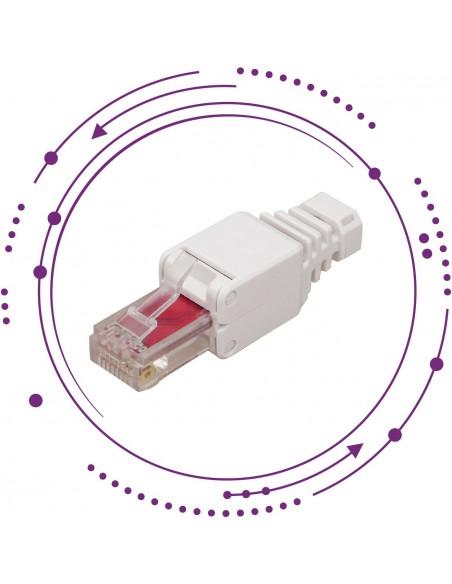 Conectores/plugs RJ11-RJ45 macho